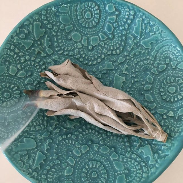 White Sage energetic cleansing